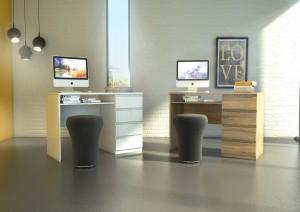 Naia Desks visualization